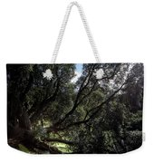 Secular Tree Weekender Tote Bag