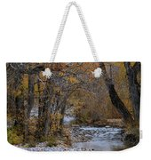 Serene Stream In Autumn Weekender Tote Bag