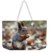 Shadow Boxing. Red Squirrel Weekender Tote Bag