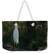 Shadow Heron Weekender Tote Bag