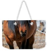 Shaggy Stallion Weekender Tote Bag