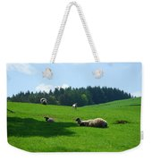 Sheep And Lambs In A Field Weekender Tote Bag