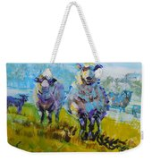 Sheep And Lambs In Bright Sunshine Weekender Tote Bag