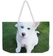 Siberian Husky Puppy A030619 Weekender Tote Bag by Mas Art Studio
