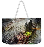 Small Spruce Growing On An Old Tree Stump Weekender Tote Bag