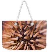 Spiny Urchin Weekender Tote Bag