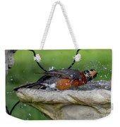 Splish-splash I Was Taking A Bath - American Robin Weekender Tote Bag