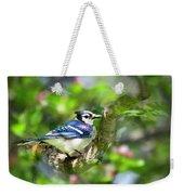 Spring Blue Jay Weekender Tote Bag