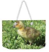 Spring Gosling Weekender Tote Bag