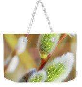 Spring Willow 4 Weekender Tote Bag