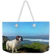 Springer Spaniel Dog In Sennen Cove Weekender Tote Bag