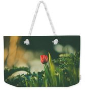 Start Of Spring Weekender Tote Bag by Dheeraj Mutha