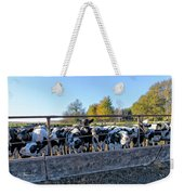 Steers Weekender Tote Bag