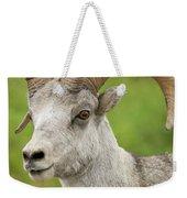 Stone's Sheep Ram Portrait Weekender Tote Bag