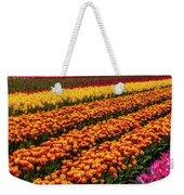 Stunning Rows Of Colorful Tulips Weekender Tote Bag