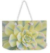 Succulent Aeonium Sunburst Weekender Tote Bag