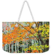 Sugar Maple Acer Saccharum In Autumn Weekender Tote Bag