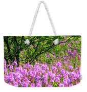 Summer Delight Weekender Tote Bag by Doug Gibbons