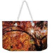 Sun Peaking Through The Autumn Colors  Weekender Tote Bag