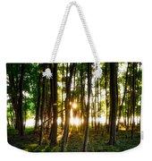 Sun Slivers Weekender Tote Bag