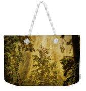 Sunbeams In The Foggy Forest #3 Weekender Tote Bag