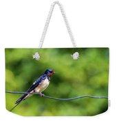 Swallow  Hirundo Rustica  Weekender Tote Bag