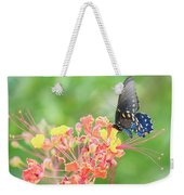 Swallowtail Butterfly Wings  Weekender Tote Bag