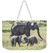 Sweet Babies Weekender Tote Bag by Robin Zygelman