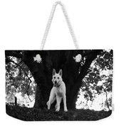 The Dog And The Tree Weekender Tote Bag