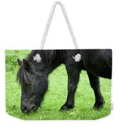 The Grass Is Greener Here. The Black Pony Weekender Tote Bag