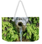The Hundred Fountains Weekender Tote Bag