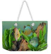 Three Discus Fish Weekender Tote Bag