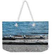 Three Gulls On A Log Weekender Tote Bag