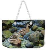 Three Mallard Ducks Swimming In A Stone Filled Brook. Weekender Tote Bag