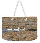 Three Trumpetor Swans 0629 Weekender Tote Bag