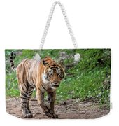 Tiger On A Stroll Weekender Tote Bag