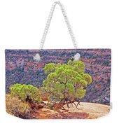 Trees Plateau Valley Colorado National Monument 2871 Weekender Tote Bag