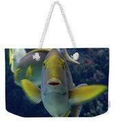 Tropical Fish Poses. Weekender Tote Bag by Anjo Ten Kate