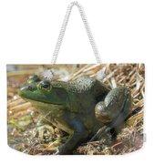 True Frog Weekender Tote Bag by Sally Sperry
