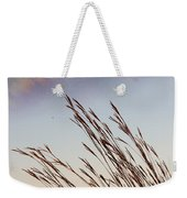 Turkey Foot Grass At Sunset Weekender Tote Bag