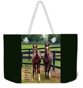 Two Friends With Proverbs 18 Vs 24 Weekender Tote Bag