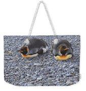 Two King Penguins By Alan M Hunt Weekender Tote Bag by Alan M Hunt