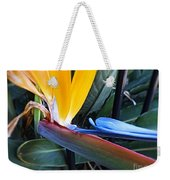 Vibrant Bird Of Paradise #2 Weekender Tote Bag