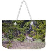 W755 Weekender Tote Bag by Joshua Able's Wildlife
