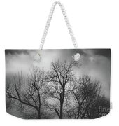 Waiting Bird Weekender Tote Bag by Dheeraj Mutha