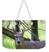 White Tailed Buck Portrait I Weekender Tote Bag