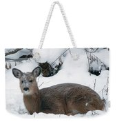 Whitetail Deer In Snow 120502 Weekender Tote Bag by Rick Veldman