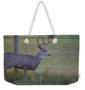 Whitetail Deer Weekender Tote Bag