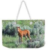 Wild Horse Foal Weekender Tote Bag
