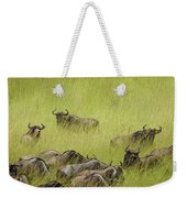 Wildebeest In Tall Grass Weekender Tote Bag by Mary Lee Dereske